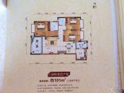 安源雅苑3室2厅2卫101平方米户型图