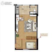 广盈�o荟1室1厅1卫50--53平方米户型图