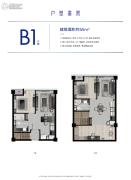 杭州泰禾中央广场2室2厅2卫55平方米户型图