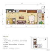 华润国际社区1室1厅1卫0平方米户型图
