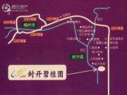 封开碧桂园交通图
