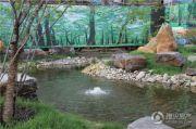 辰能溪树河谷外景图