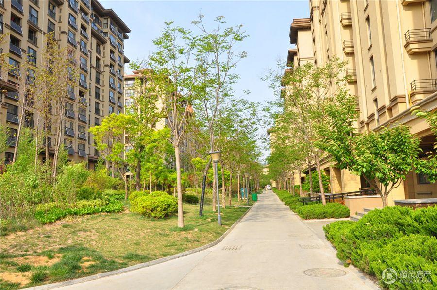 桦林颐和苑社区实景,在售房源剩余六十几套,三期预计今年5月份交房。(2015年5月5日)