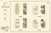 银泰红城五期逸墅299平方米户型图