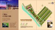顺德碧桂园650平方米户型图