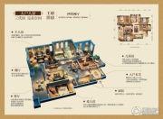 金科公园王府王府洋房4室2厅2卫147--165平方米户型图