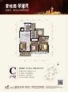 碧桂园・翠湖湾(星运山水城邦花园)2室2厅2卫104平方米户型图