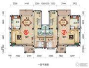 宜昌碧桂园257平方米户型图