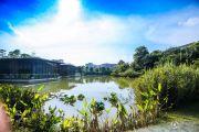 中惠松湖城外景图