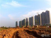 锦艺金水湾实景图