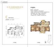 中天金融城国际社区3室2厅2卫104--109平方米户型图