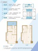 南京金奥缤润汇2室2厅1卫49平方米户型图