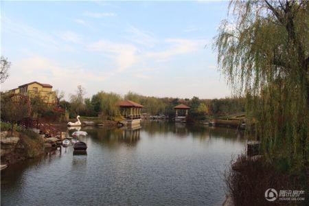 鲁商知春湖