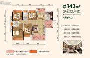 星英半岛4室2厅2卫143平方米户型图