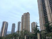 鑫江水青花都实景图