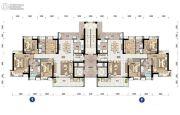 沙湖绿洲4室2厅2卫181平方米户型图