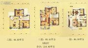 碧桂园・豪庭214平方米户型图