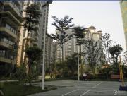 台湾街实景图