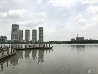 金茂绿岛湖