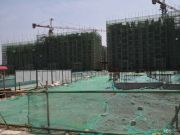 北京院子实景图