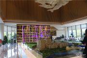 上湖城章实景图
