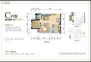 通用晶城2室2厅1卫55平方米户型图