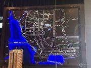 保利达小行星规划图
