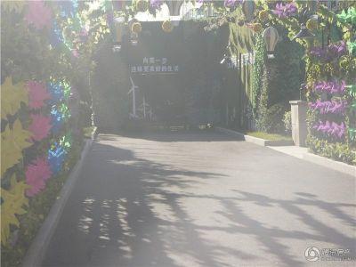 碧桂园首府