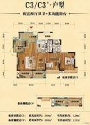 英伦世家4期2室2厅2卫108平方米户型图