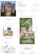 约克郡南郡4室3厅5卫504平方米户型图