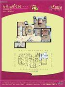 碧桂园凤凰城2室2厅1卫102平方米户型图