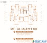 恒大绿洲3室2厅2卫146--152平方米户型图