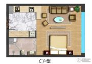 华地・远景1室1厅1卫46平方米户型图