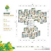 富力红树湾3室2厅0卫104--129平方米户型图