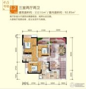 川三滨岛花园3室2厅2卫112平方米户型图