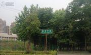 国创光谷上城一期实景图