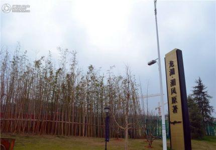 龙湖・湘风星城