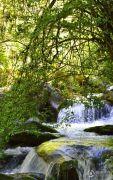 神农架龙降坪国际生态旅游度假区实景图