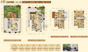 阳西温泉城685平方米户型图
