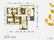 绿地锦天府0室0厅0卫185平方米户型图