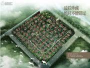 丽江花马溪谷II规划图