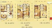 碧桂园・豪庭251平方米户型图