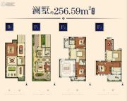 华强城256平方米户型图