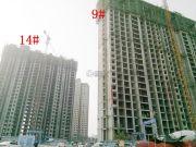 物华国际城实景图
