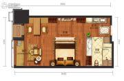 华远国际公寓1室1厅1卫51--56平方米户型图