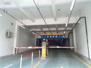 曲江・紫金城实景图