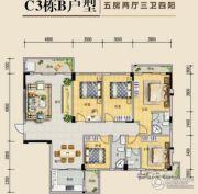 锦绣花城5室2厅3卫0平方米户型图