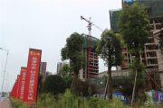 成中紫金城外景图