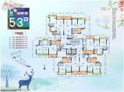 中恒海晖城66--88平方米户型图
