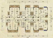华策・凤凰美域34--36平方米户型图